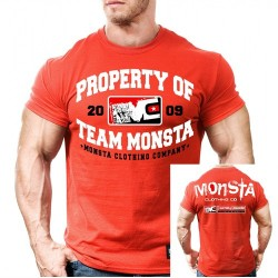 monsta-property